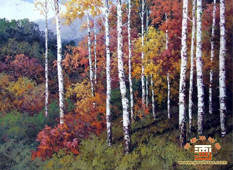油画作品 风景画 白桦林油画风景画 > 作品编号: bhl8009 白桦林 桦树