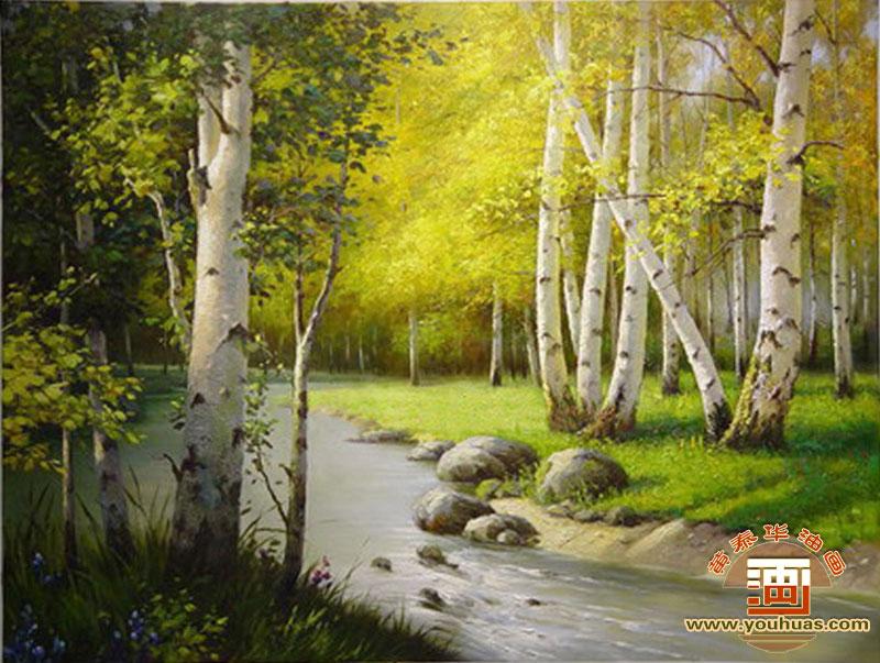 白桦林 桦树林油画