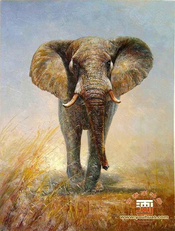 油画作品 动物画 大象 画 大象油画 _作品编号: dx1012