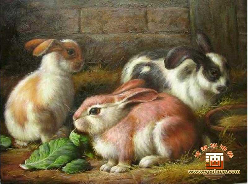 油画作品 动物画 兔子 画 兔子油画 _作品编号: tu1007