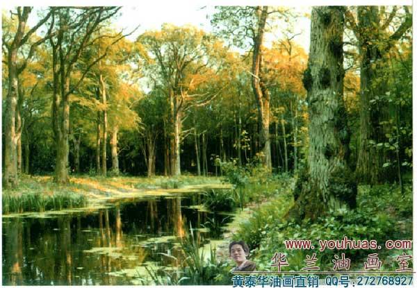 手绘森林树图片